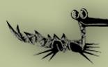 Caimán Barbudo